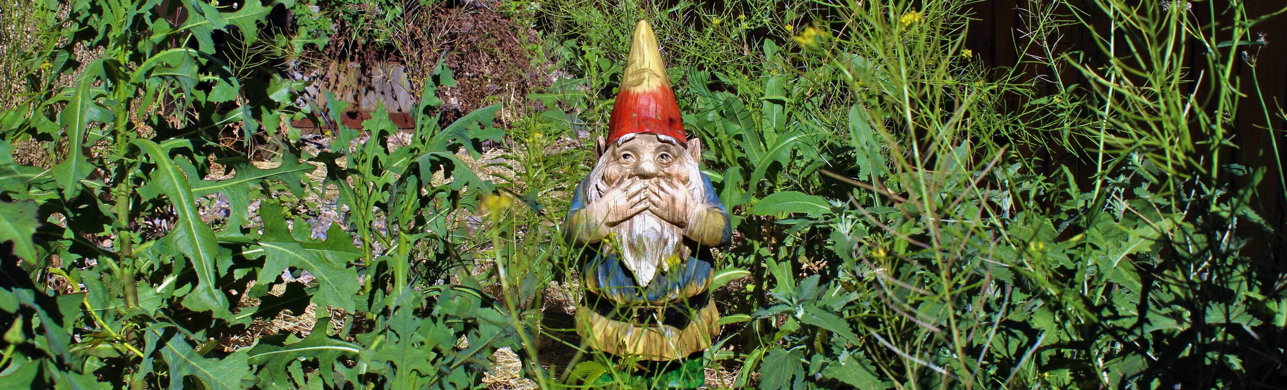 garden_gnome_cropped.jpeg